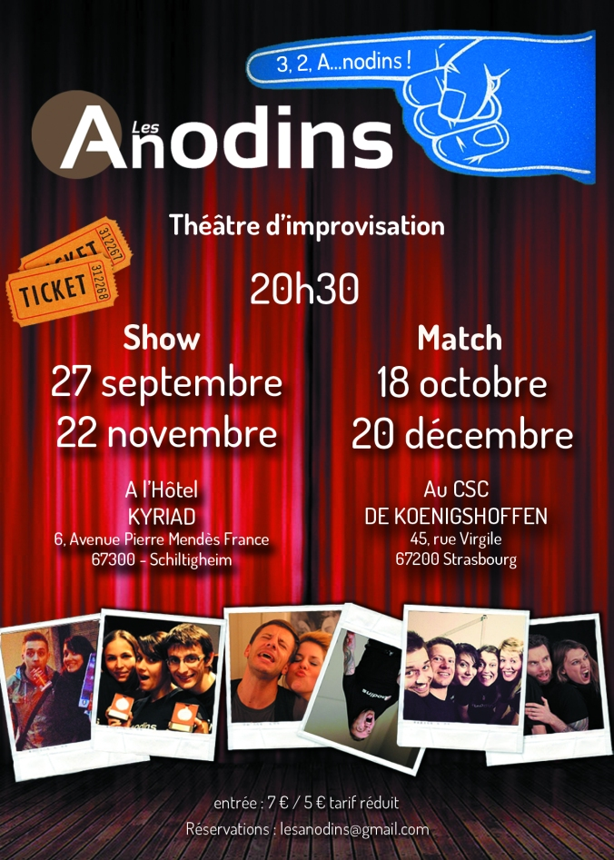 flyer anodins 2014 blog